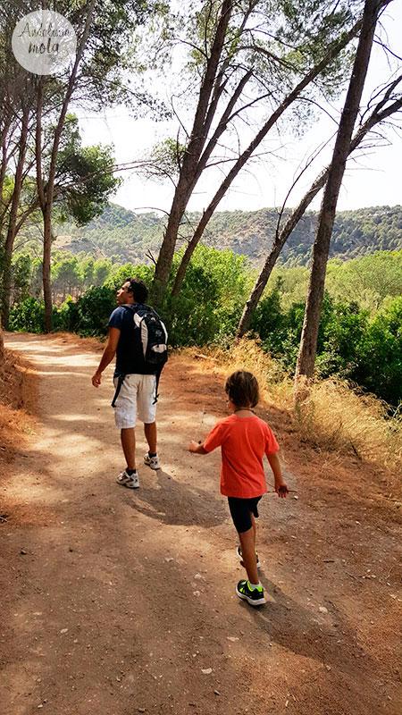 sendero-facil-niños-familias-malaga