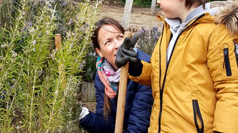 Plantando árboles, arbolada Cueva de San Marcos