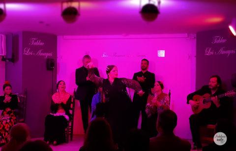 """Inauguración Tablao Flamenco """"Los Amayas"""""""